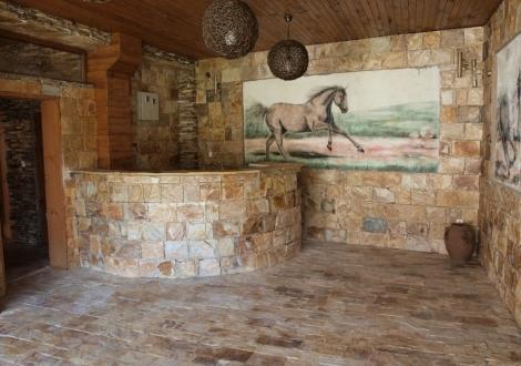 Хотел Петрелийски Огняново
