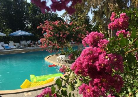 All inclusive пакети за лятото на топ цени от хотел Бриз *** Златни Пясъци! ПОЛЗВАНЕ НА БАСЕЙН + ЧАДЪР И ШЕЗЛОНГ! БЛИЗО ДО ПЛАЖА!