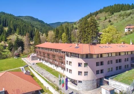 Борика хотел